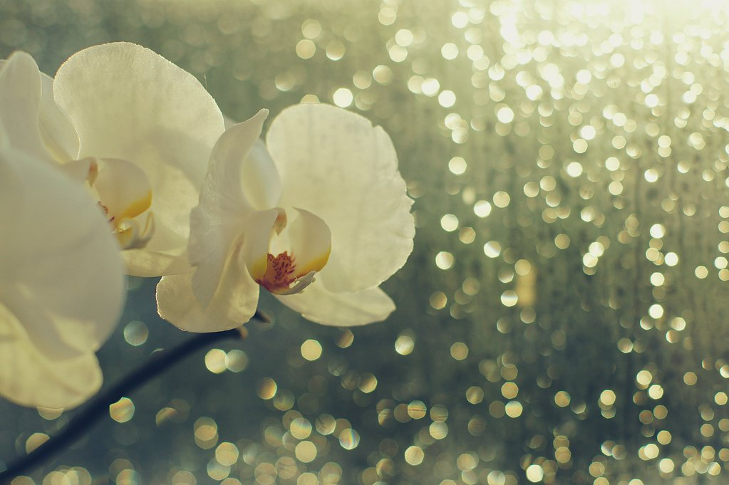 rain_and_sun_by_nootperfect-d8pb6fb